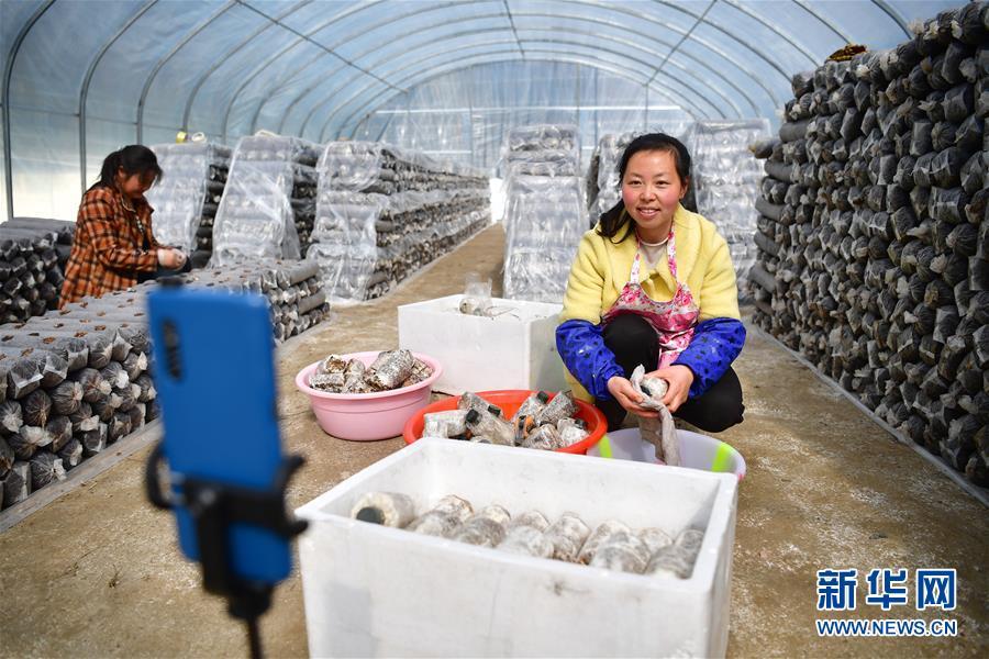 (新华全媒头条·图文互动)(4)奔向新的幸福——陕西贫困县全部摘帽的N个截面